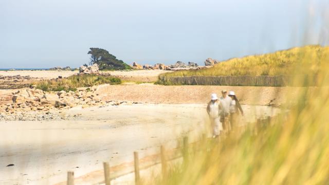 Plage Des Dunes Port Blanc
