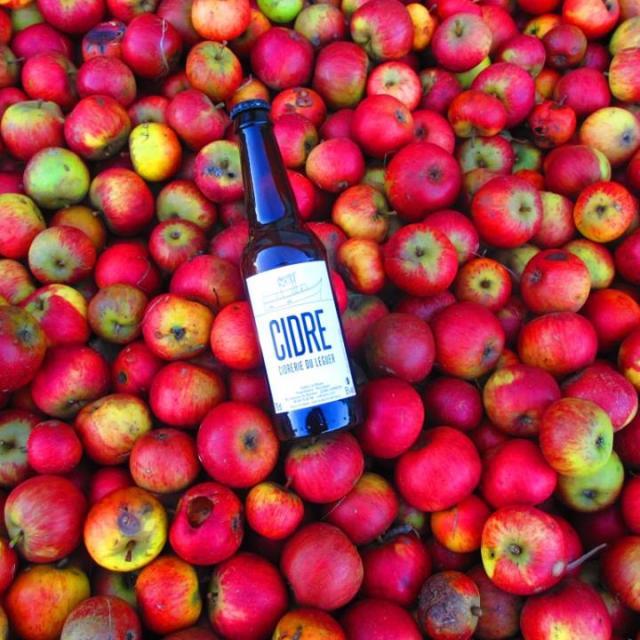 Cidrerie Du Léguer Bouteille Dans Les Pommes