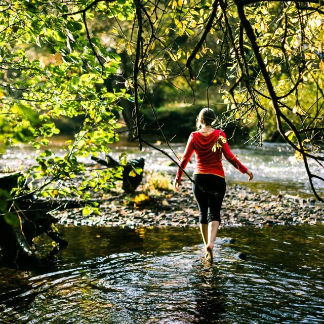 Le Léguer - Rivière sauvage