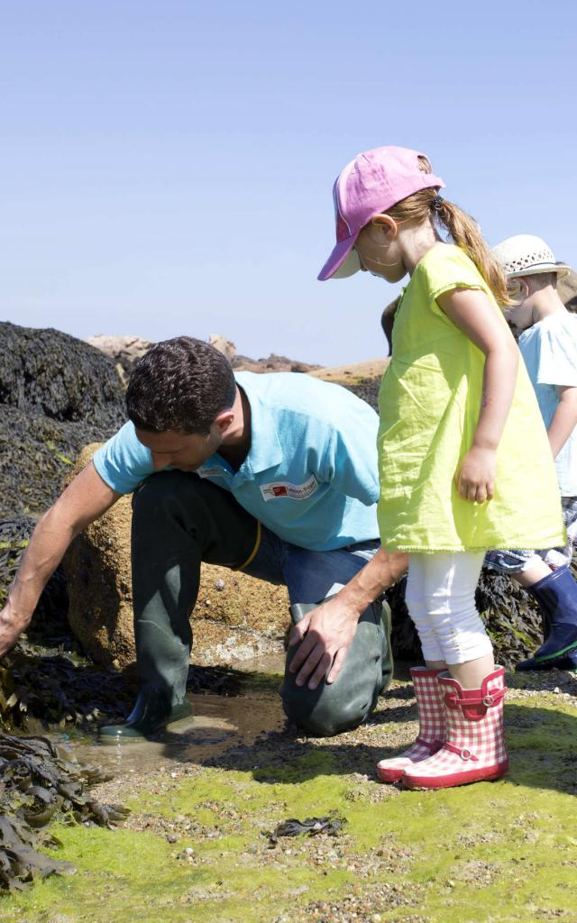 Sortie Découverte Marée Basse Aquarium Trégastel Alexandre Kozel (2)