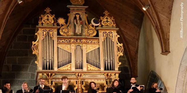 orgue-de-dallam-mh-buisset.jpg
