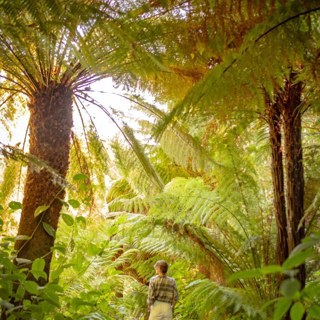 plouguiel-jardin-de-kestellic.jpg