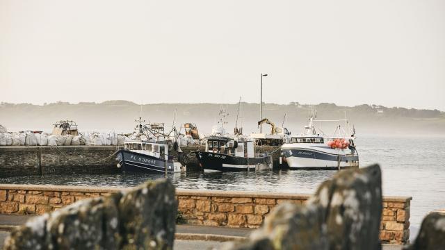 Port de Locquémeau