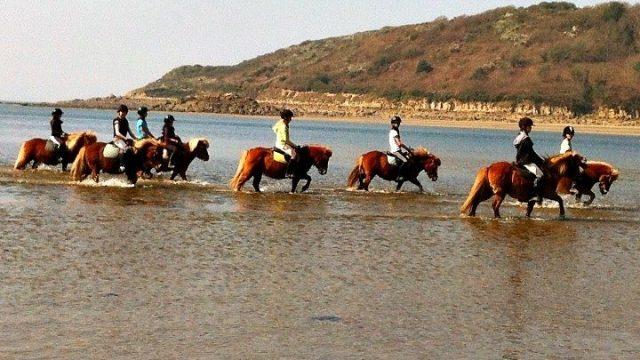 Balade à cheval en bord de mer avec le Poney Club de Kerboriou