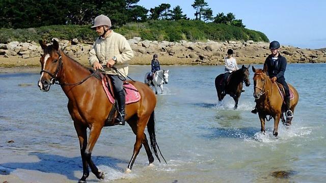 Balade à cheval en bord de mer avec le Club Hippique de Trégastel
