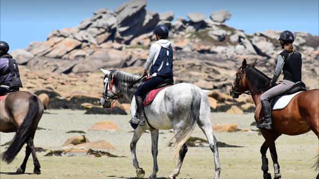 Balade à cheval en bord de mer avec Equitation Saint Samson