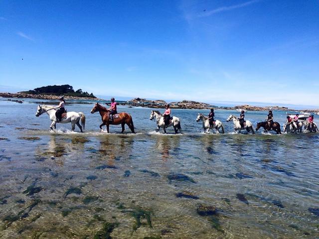 Balade à cheval en bord de mer avec Rulan Equitation