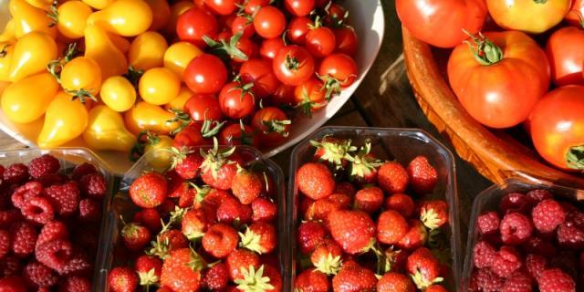 Marche Fruits Trébeurden